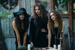 Three witches at the table. On the eve of Halloween Royalty Free Stock Photos