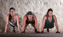 Three Women Do Push Ups in Boot Camp Workout. Sweating women doing push ups during bootcamp workout Stock Photos