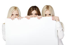Three women peeking over white board. Three women peeking over edge of blank empty paper billboard with copy space for text, against white background Royalty Free Stock Image