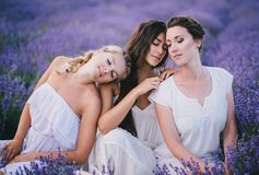 Three women posing in a lavender field Stock Photos