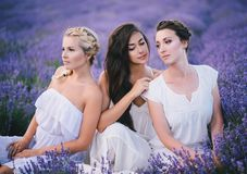 Three women posing in a lavender field Royalty Free Stock Photography