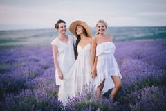 Three women posing in a lavender field Stock Photo