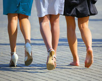 Three women's legs Royalty Free Stock Photography