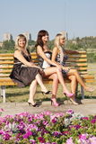 Three  women in a summer park Royalty Free Stock Photos