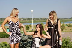 Three  women in a summer park Royalty Free Stock Image