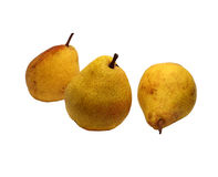 Three wonderful ripe pears Royalty Free Stock Photography