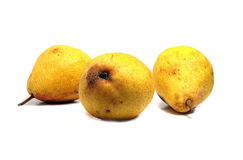 Three wonderful ripe pears Royalty Free Stock Image