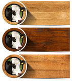 Three Wooden Banners with Head of Cow Stock Image