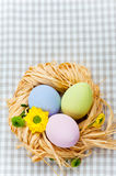 Three wooden eggs in nest Royalty Free Stock Images