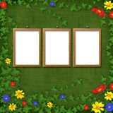 Three Wooden frameworks for portraiture. On the abstract background with flowers Stock Images