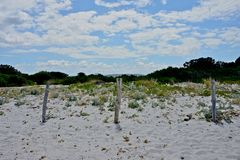 Three wooden poles put in the sand. Detail of white sandy beach with three wooden poles put in the sand Royalty Free Stock Photos