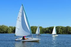 Three yachts cruise on river Royalty Free Stock Photo