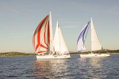 Three yachts sailing Stock Images