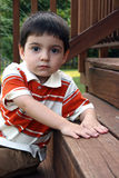 Three Year Old Boy Stock Photography