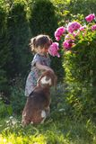Three year old girl playing with cute dog in the garden. Stock Photo