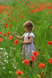 Three year old toddler girl in the summer field of blooming poppies stock image