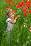Three year old toddler girl in the summer field of blooming poppies stock photo