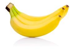Three yellow Bananas ripe Isolated on white background Royalty Free Stock Photo