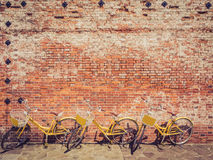Three yellow bicycle against a brick wall Royalty Free Stock Images