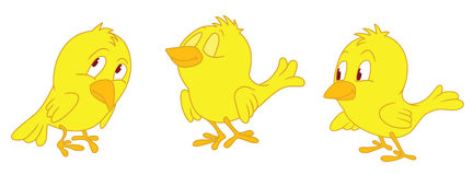 Three yellow chicken. Three standing yellow chicken with emotions Stock Illustration