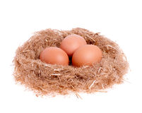 Three yellow eggs in the nest Royalty Free Stock Photos