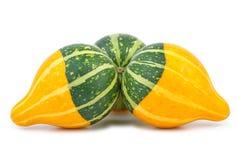 Three yellow-green fancy pumpkins Stock Photo