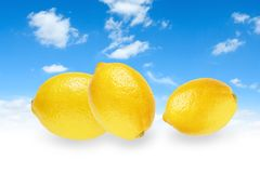 Three yellow lemons Stock Photos