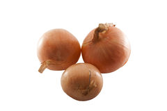 Three yellow onions. On a white background Stock Photos