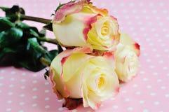 Three yellow-orange roses Royalty Free Stock Photos