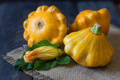 Three yellow pattypan squash with leaf and flower on a dark wooden table Stock Image