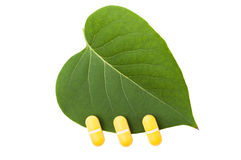 Three yellow pills on green leaf. Homeopathic concept isolated on white background Stock Image