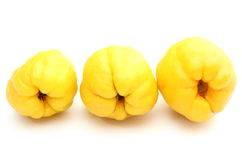 Three yellow quinces on white background Stock Photography