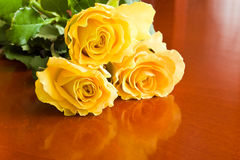 Three yellow roses Royalty Free Stock Photo