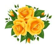 Three yellow roses. Vector illustration. Royalty Free Stock Photography