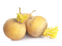 Three yellow turnips Stock Photo