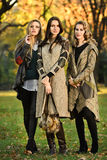 Three young beautiful fashion models posing in the park. Royalty Free Stock Image