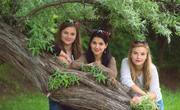 Three young beautiful ladies posing in the park with Royalty Free Stock Photo