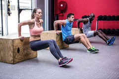 Three young Bodybuilders doing exercises royalty free stock image