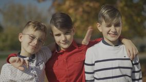 Portrait of three young boys embracing outdoors. Little brothers spending time together in the park. stock video footage