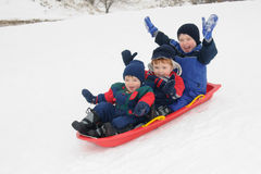 Three young boys sledding downhill together Stock Photography