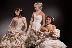 Three Young Brides Royalty Free Stock Photography