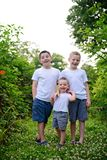 Three young brothers potrait. Three young boys with short haircuts standing portrait royalty free stock images