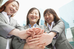 Three young businesswomen putting hands together, low angle view Royalty Free Stock Images