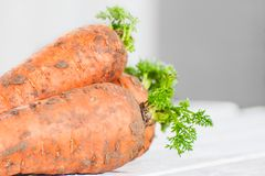 Three young freshly-carrots with a tops on a wooden table. Three young freshly-carrots with tops on a wooden table Royalty Free Stock Photo