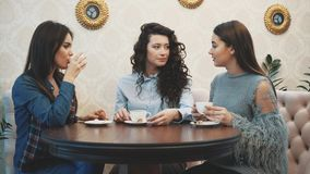 Three young girls sit in a coffee shop and talk. During this time, enjoy cappuccino. Happy to spend time together. Three young girls sit in a coffee shop and stock video footage