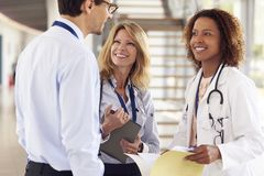 Three young male and female doctors in consultation stock image
