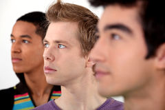Three young men in profile Royalty Free Stock Images