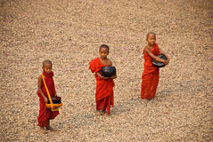 Three young monks Stock Images