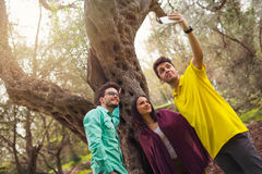 Three young people make selfi under the olive tree Royalty Free Stock Image