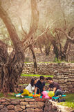 Three young people on picnic sitting on blanket under the olive Stock Photography
